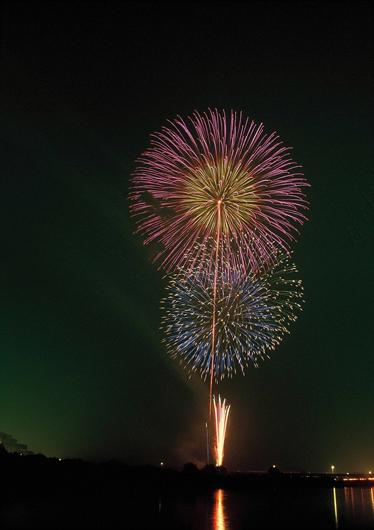 審査員特別賞「川島の華」