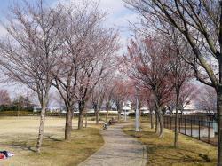 下岡崎近隣公園1