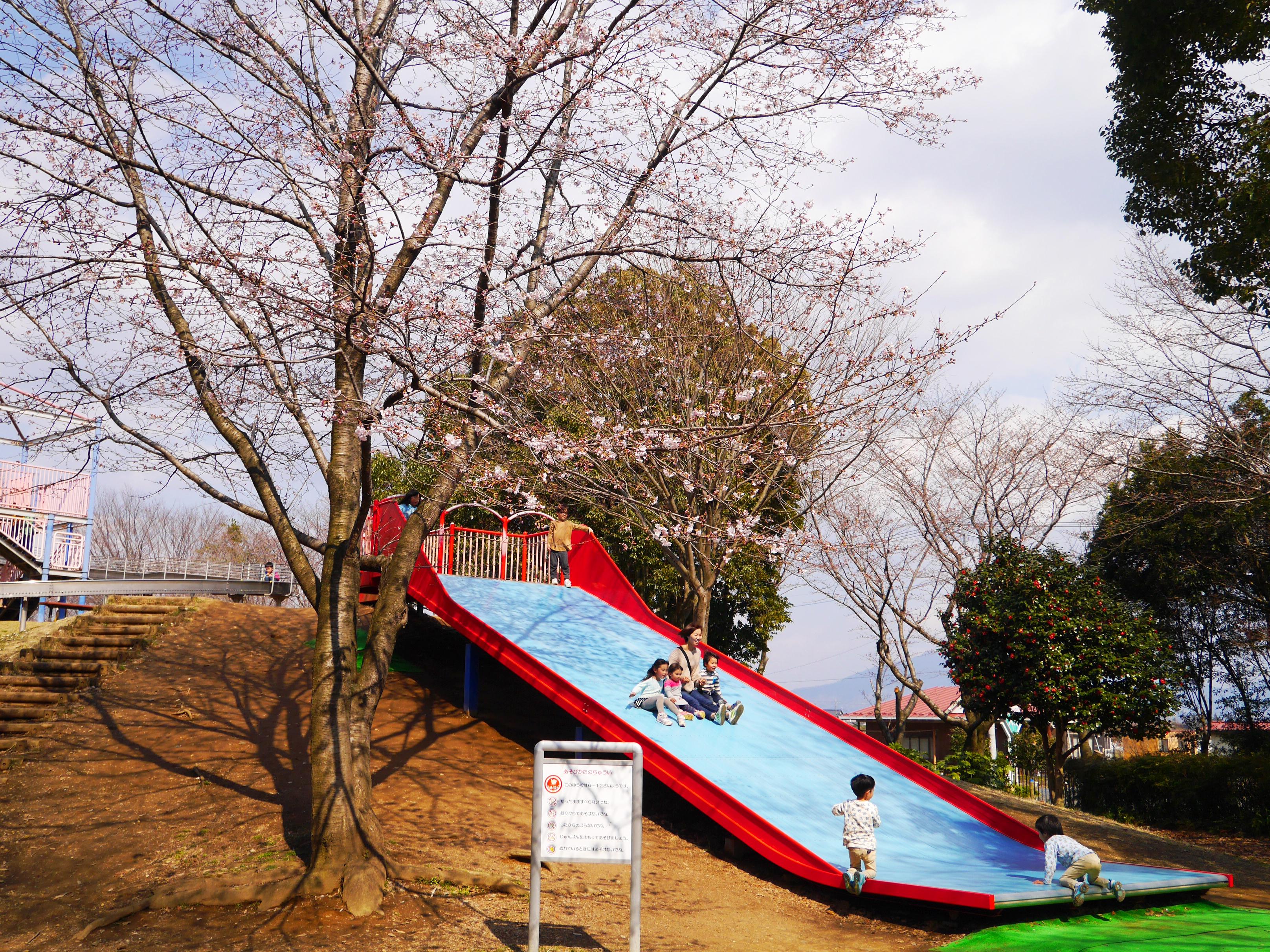 県西総合公園2