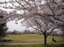 下岡崎公園