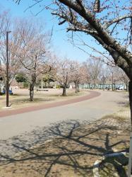 県政総合公園1