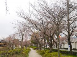下岡崎公園2