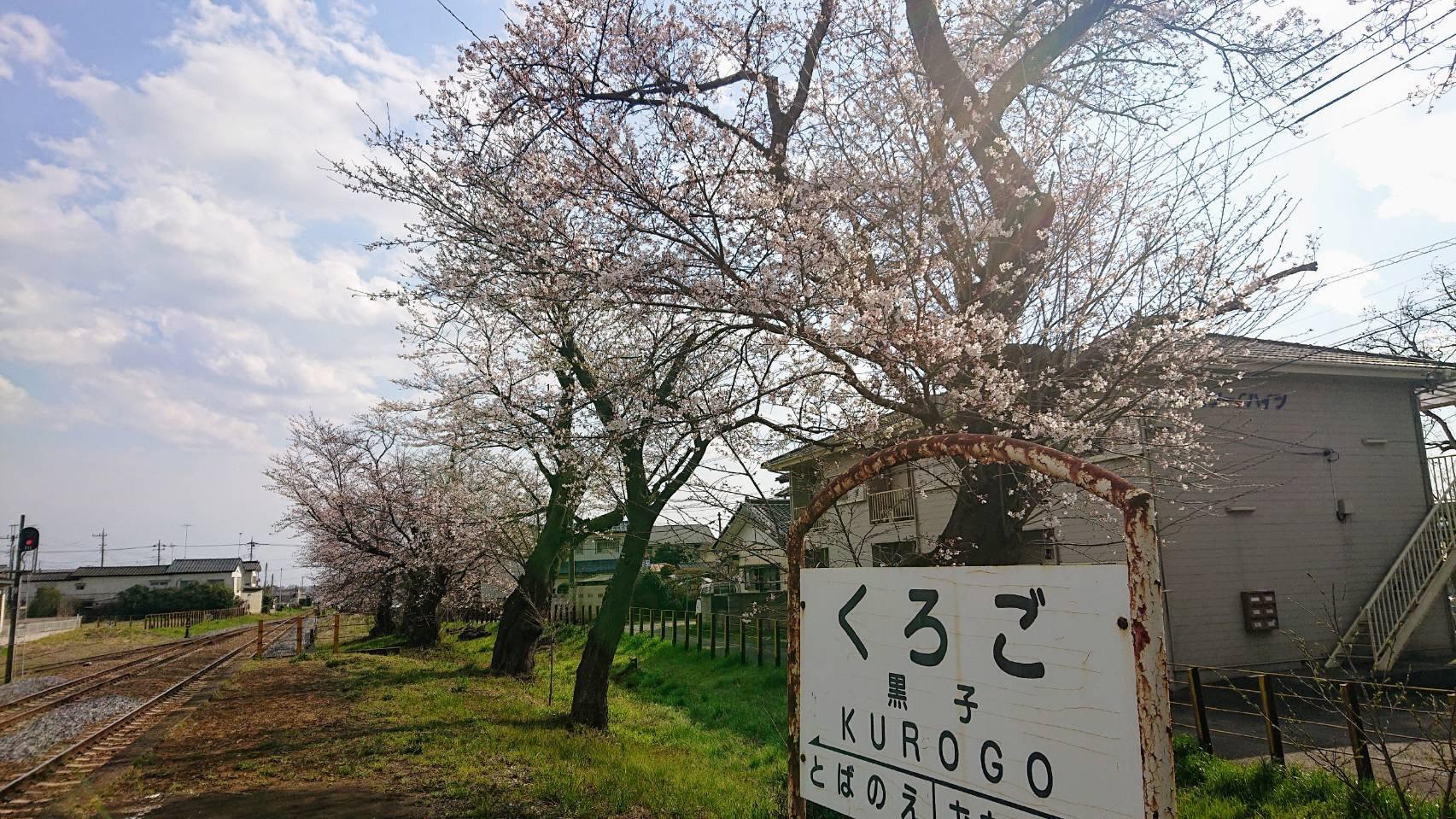 0323黒子駅�@