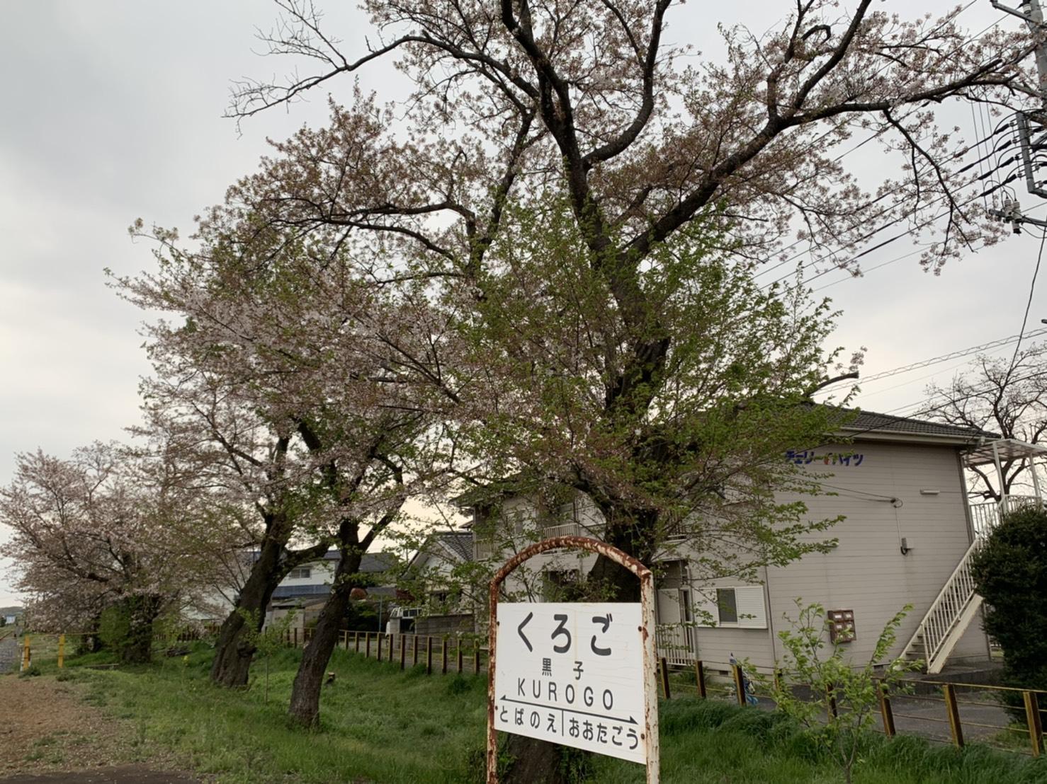 0408黒子駅�@