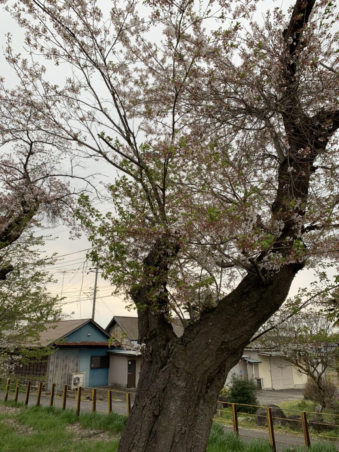 0409黒子駅�A